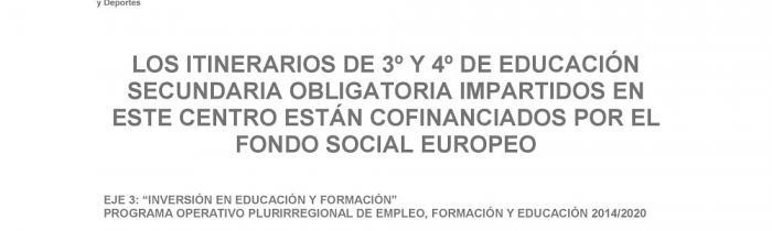 FONDO SOCIAL EUROPEO - ESO